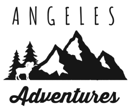 Adventures in the Angeles Retina Logo